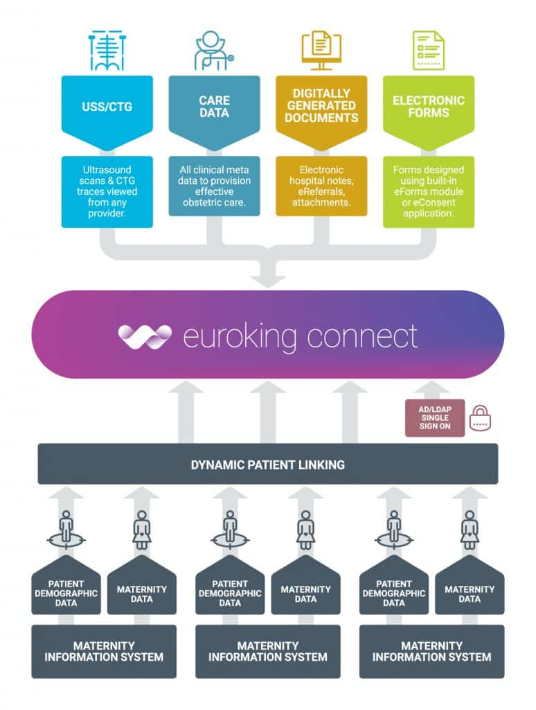 euroking connect, shared maternity care records
